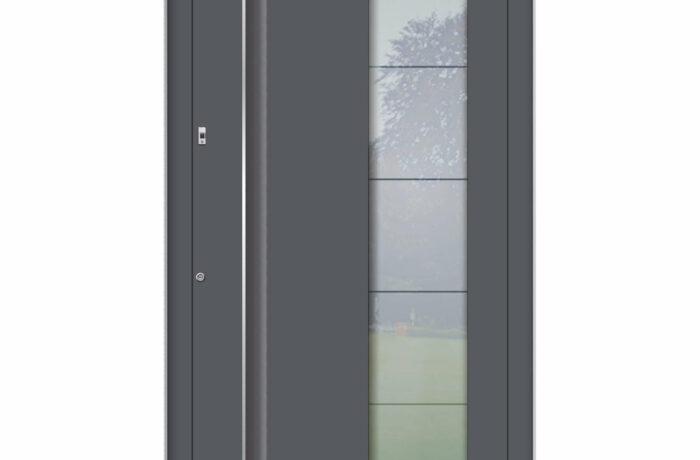 Pirnar-alu-eingangstuer-premium-6016-glas-mit-motiv-1