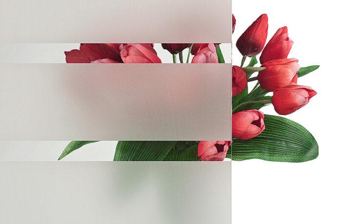 Pirnar-eingangstuer-verglasungen-c-klarglas-mit-motiv