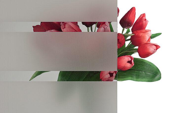 Pirnar-eingangstuer-verglasungen-c-parsol-grau-mit-motiv