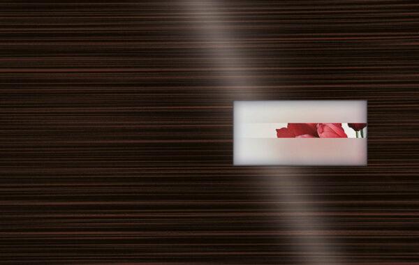 Pirnar-eingangstuer-verglasungen-tueren-african-mystery-glanz-glas-gruppe-d